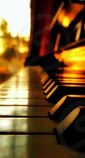 music is the language we all share photo