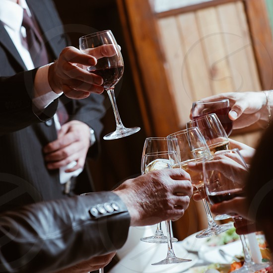 group of people holding clear wine glasses making a toast photo
