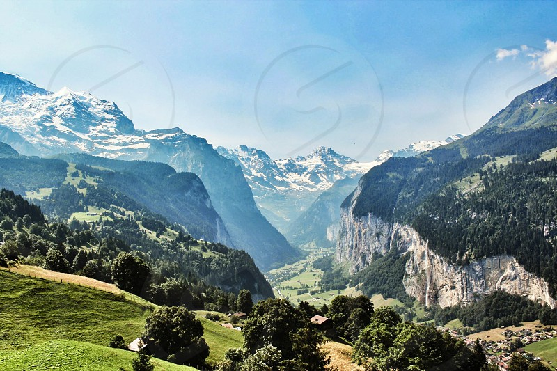 green pine trees cover mountain  photo