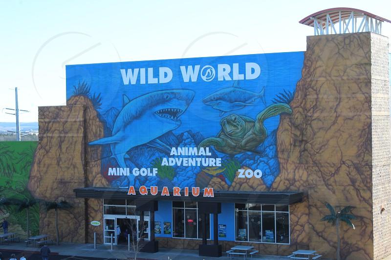 Wild World in Branson Missouri photo