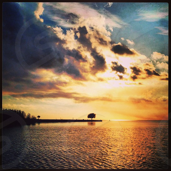 Cypermort Point Louisiana  photo