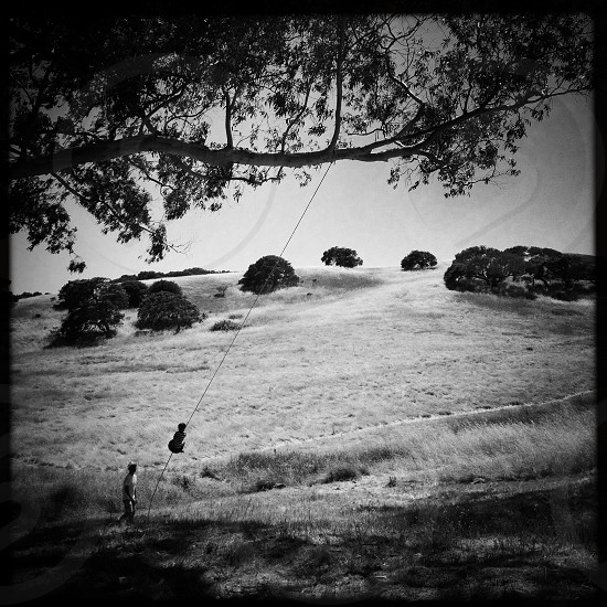 Father and son rope swing in a field in Petaluma Ca. Black&white. Tree. Nature. Leisure. Summer. photo