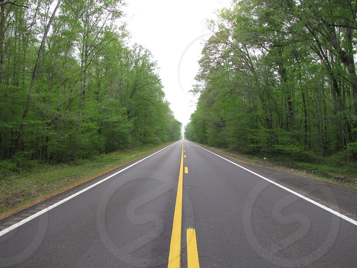 Straight rural highway with trees on either side photo