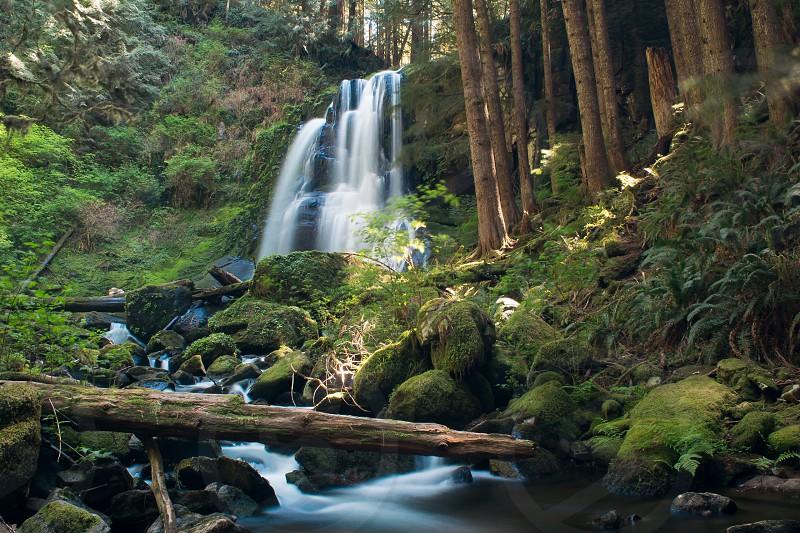 Waterwaterfalltreestreeoutdoorhike photo