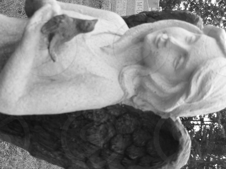 Angel cemetery statue prayer photo