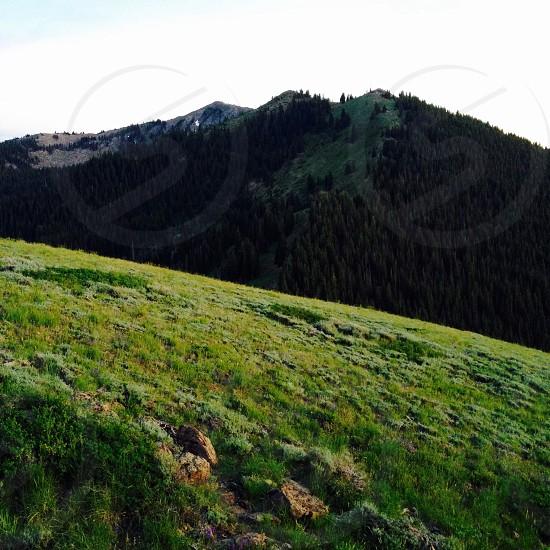 green grass field mountain summit photo