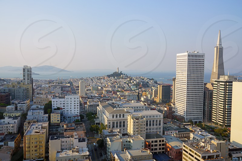 Transamerica Pyramid - San Francisco CA photo
