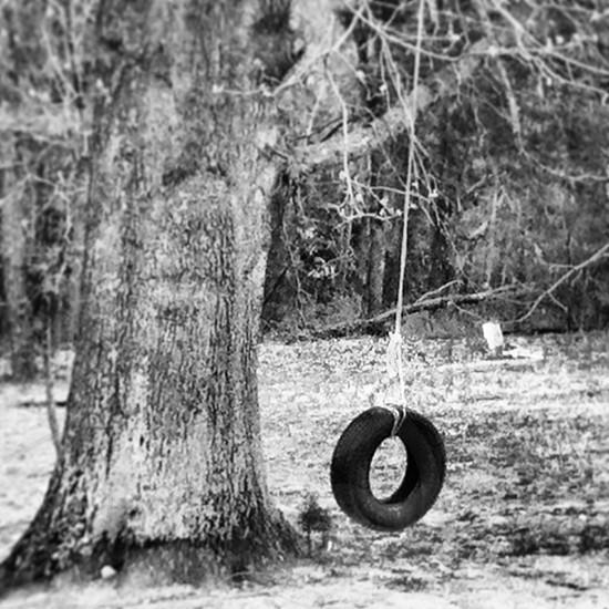 black tire swing photo