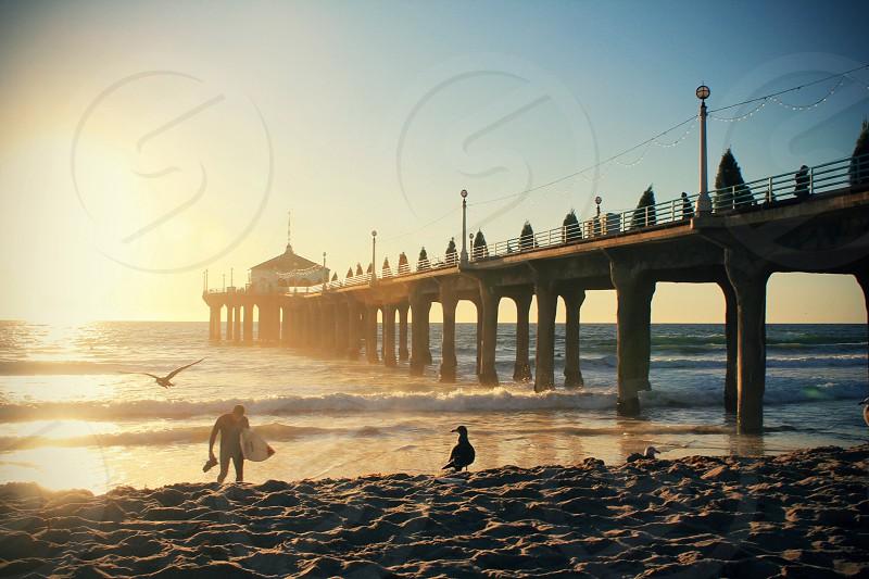 beach pier photo