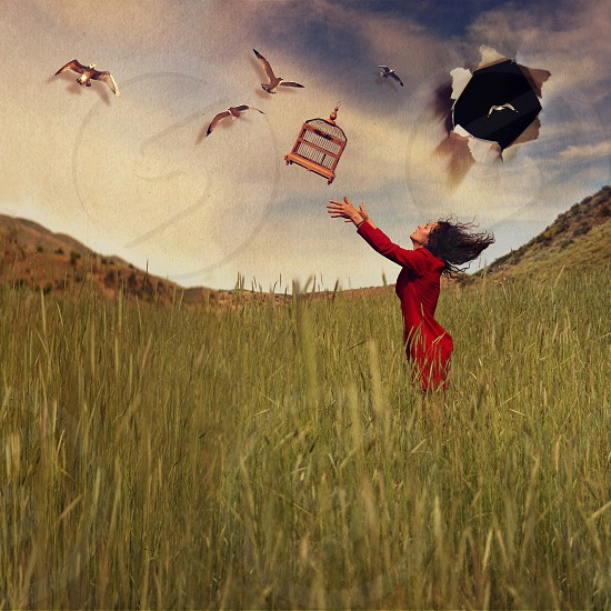 bird cage woman paper sky hole surreal pretty dress red field instagram filter photo