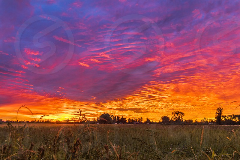 The sky converted onto a colorful dramatic palette from an unknown magic artist. Somewhere close to Talca Chile photo