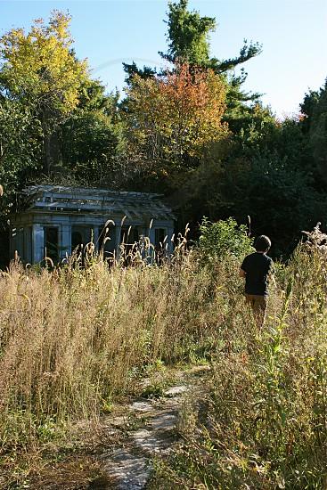 Overgrown. Autumn in Massachusetts. photo