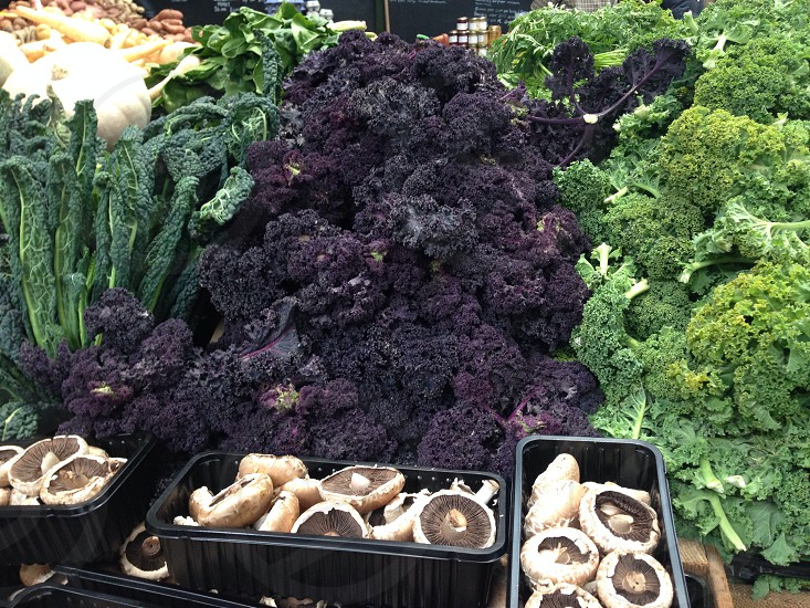 Kale in the market photo