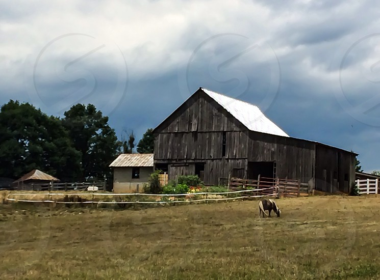 Old barn with horse grazing and round hay bales in Huddleston VA photo