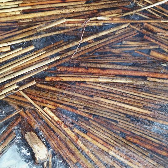 brown sticks on water photo
