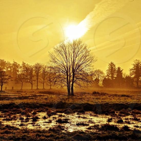 Winter sunrise! photo