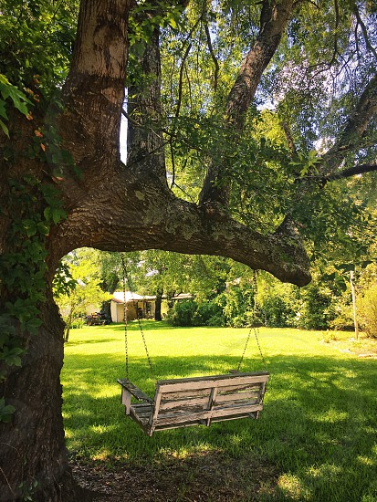Tree swing porch swing yard lawn grass green picnic tree branch shade distressed antique shabby chic country simple pleasure solitude peace tranquil country backyard summer lemonade spring  photo