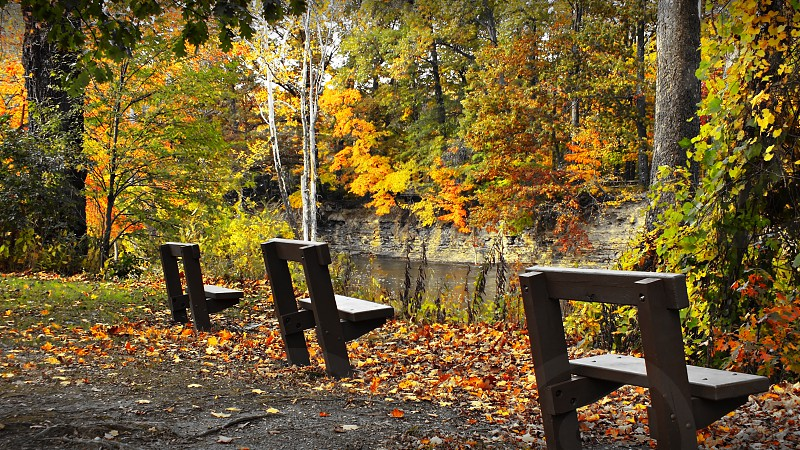 Empty Seats overlooking a river in autumn. It's isolated and empty representing either solitude or more of a dark isolationism. Park benches reserve seats for no one. photo