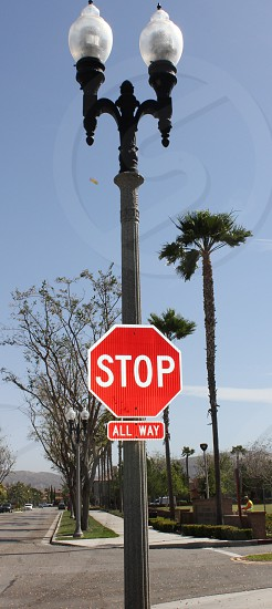 Sign - stop sign on a pole photo