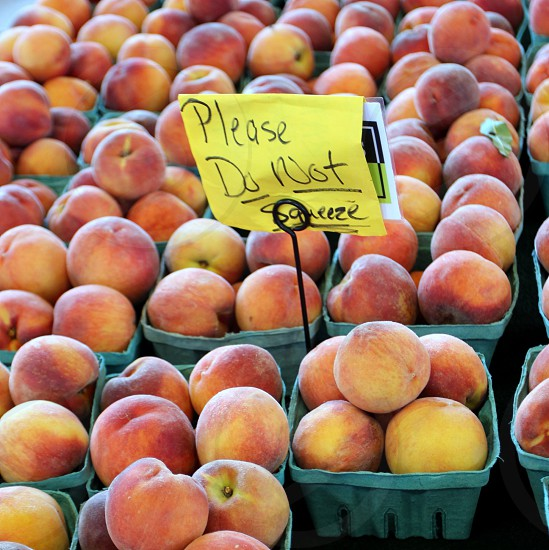 Peaches in cartons please do not squeeze at farmers market photo