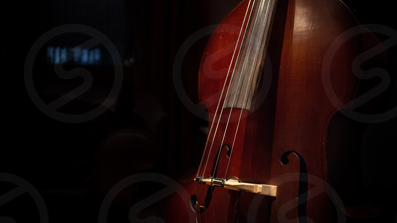 Mysterious Upright Bass photo