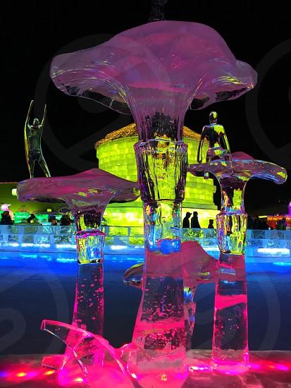 Ice statue mushrooms photo