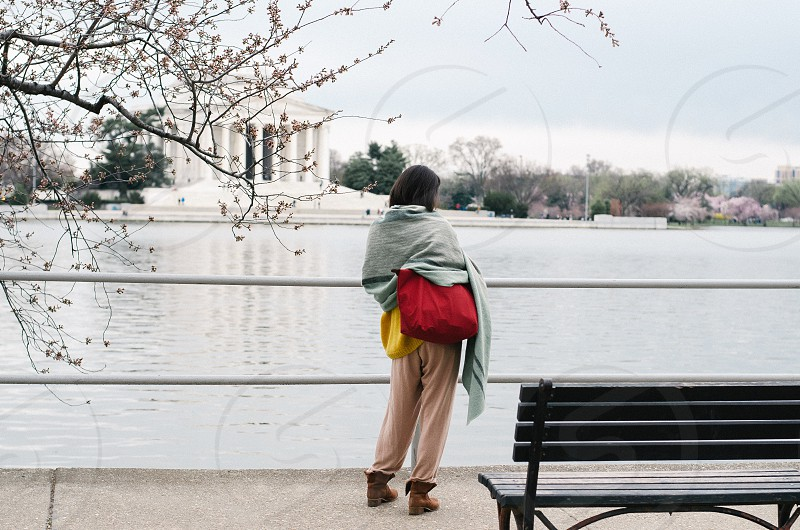 A woman stands next to one of hundreds of cherry trees planted around the Tidal Basin in Washington D.C. photo
