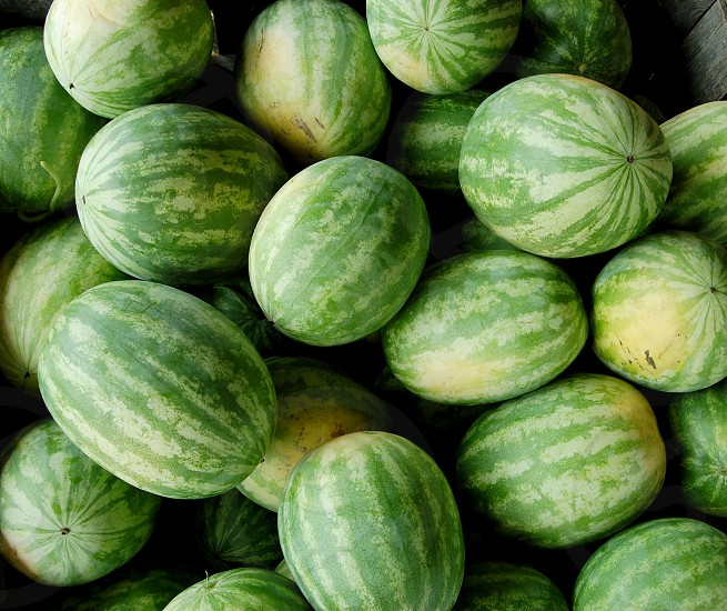 a pile of watermelons photo