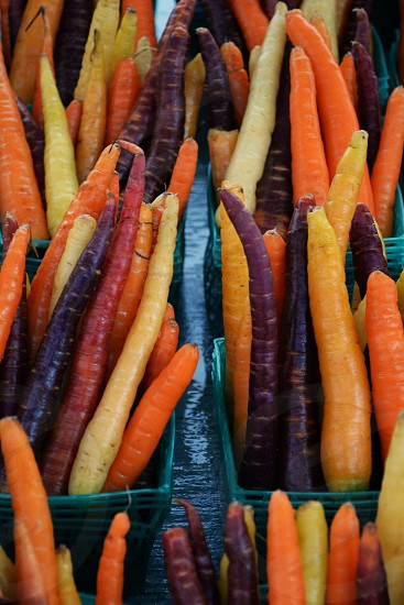 Colorful carrots on farmers market photo