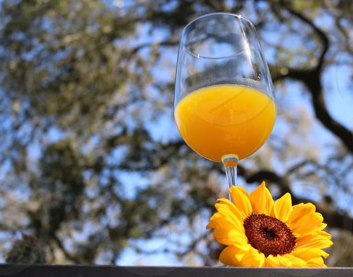 Happy happy hour blue sky outside sun flower yellow photo