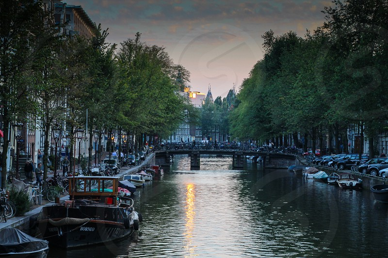 Amsterdam Netherlands Holland canal bridge trees cars boats buildings road street sky sunset photo