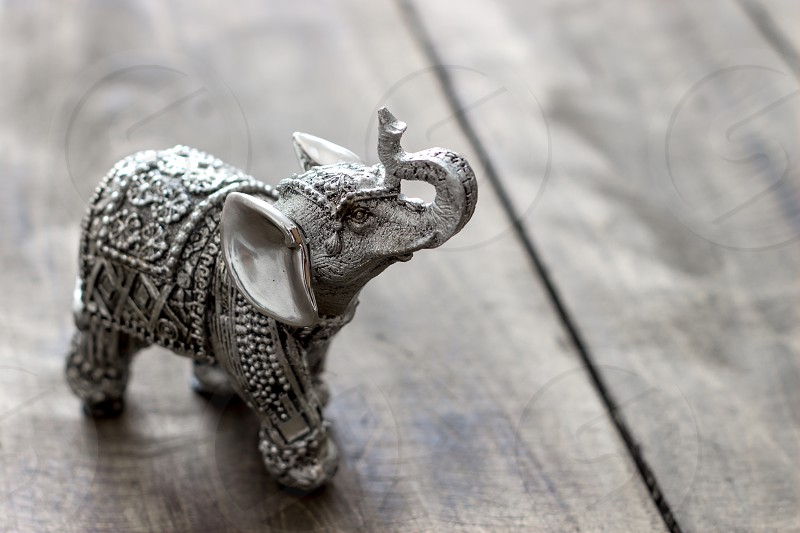 Indian Elephant Figurine on wooden table photo