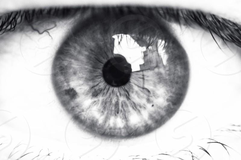 Pupil eye eye closeup black and white iris photo