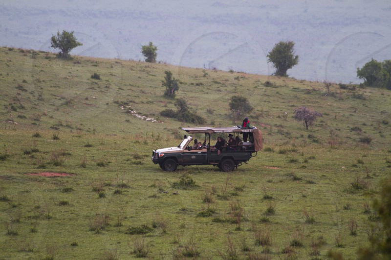 group of people riding safari vehicle on green grass field photo