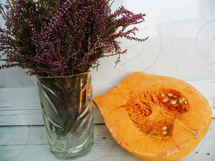 carica fruit photo