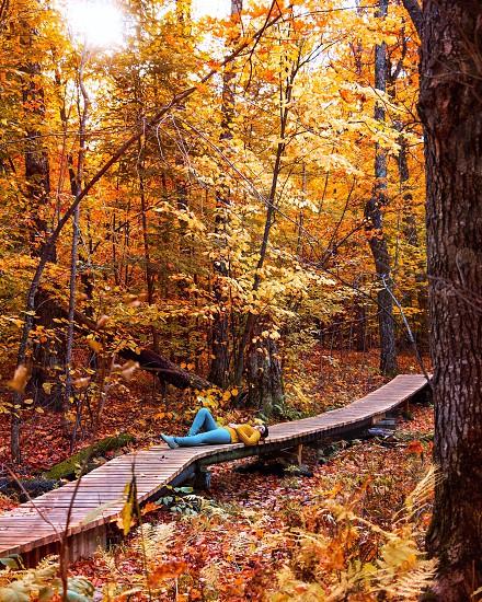 Fall orange leaves autumn leaves girl lying down relaxing  photo