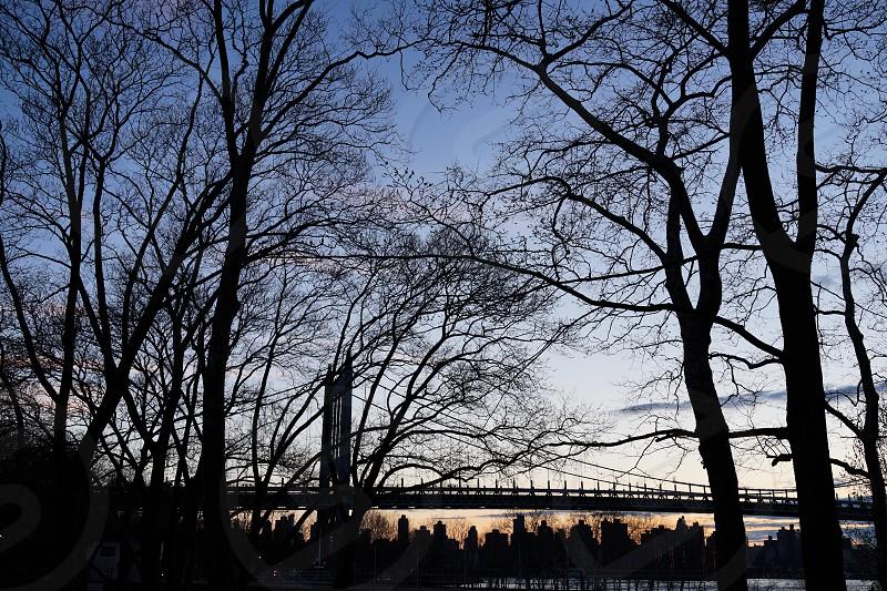 NYC. Manhattan. Bridge. Skyline.  photo