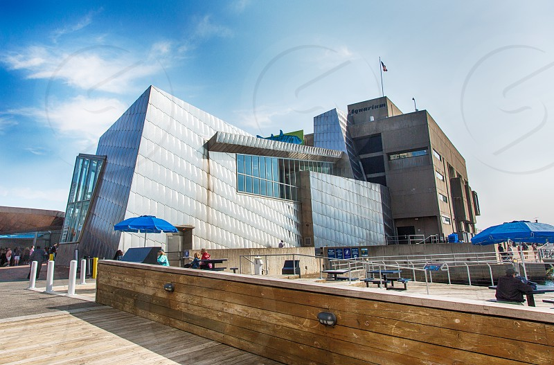 New England Aquarium in Boston MA  photo