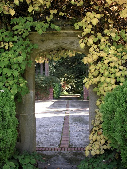 Vegetation around multiple arched entries to patio areas. photo