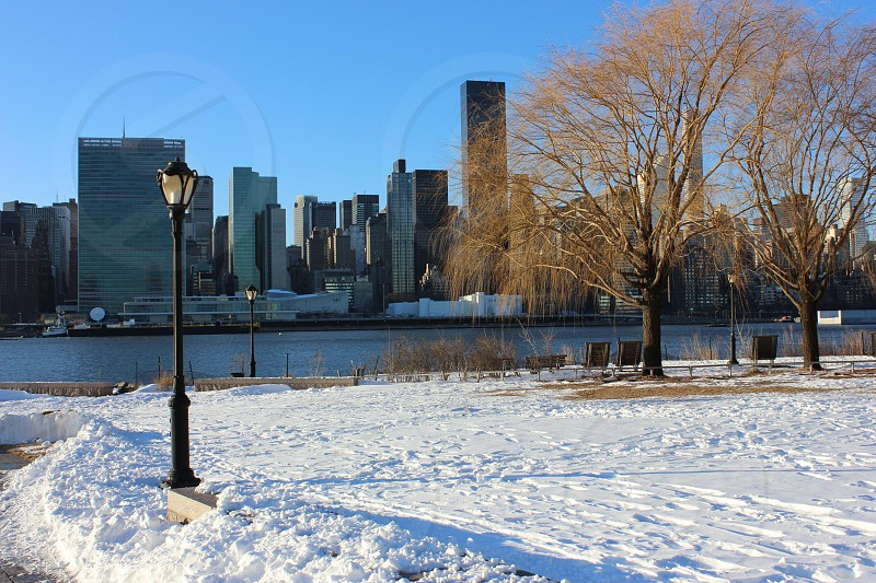 white snow covered ground with black street lamp by brown trees under blue sky photo