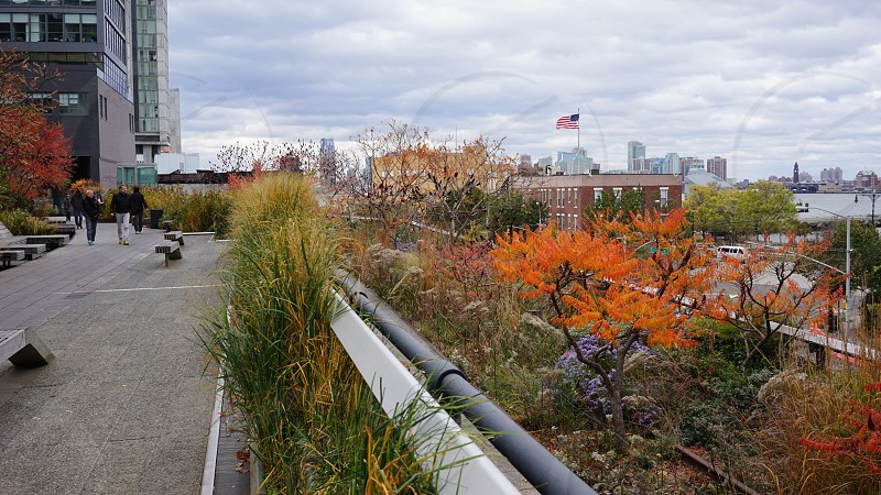 New York Highline photo