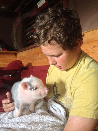 A boy and his pig photo