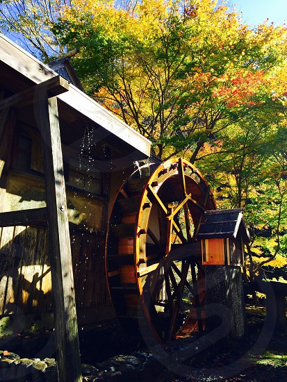 photo of brown wooden watermill photo