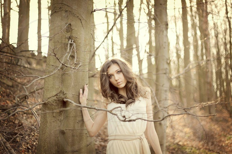 Girl in the woods 2 photo