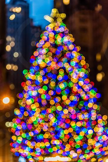 Christmas tree bokeh  photo