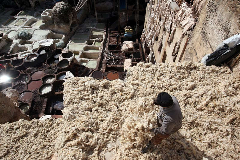 The Leather production in the old City in the historical Town of Fes in Morocco in north Africa. photo