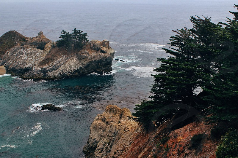 cliff pine trees and ocean photo