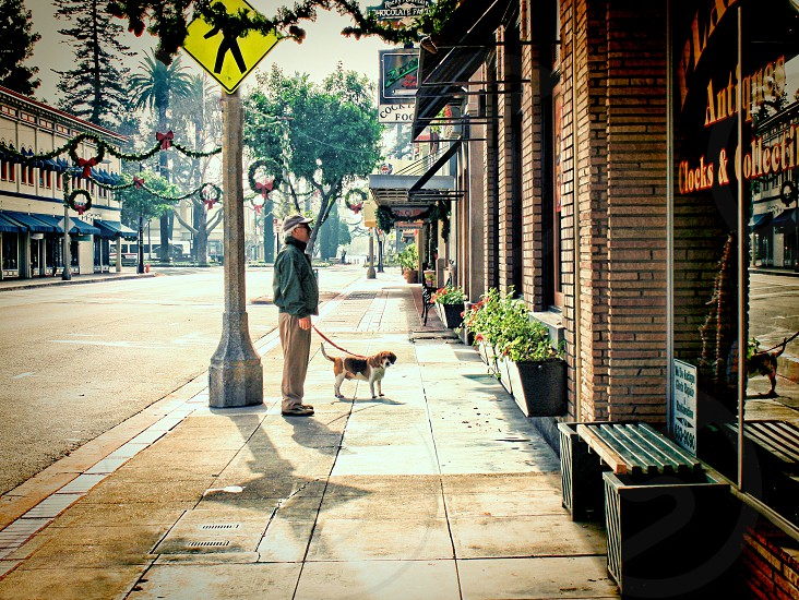 Walking on an empty street in a small town decorated for Christmas a man and his dog look at shop windows. photo