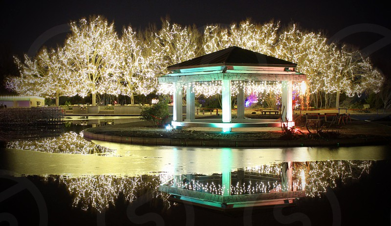 Holiday lights reflected on a pond. photo