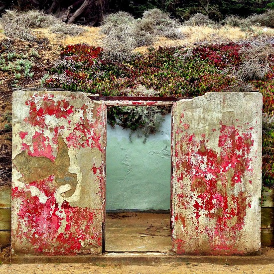 stone doors and wall with plants photo